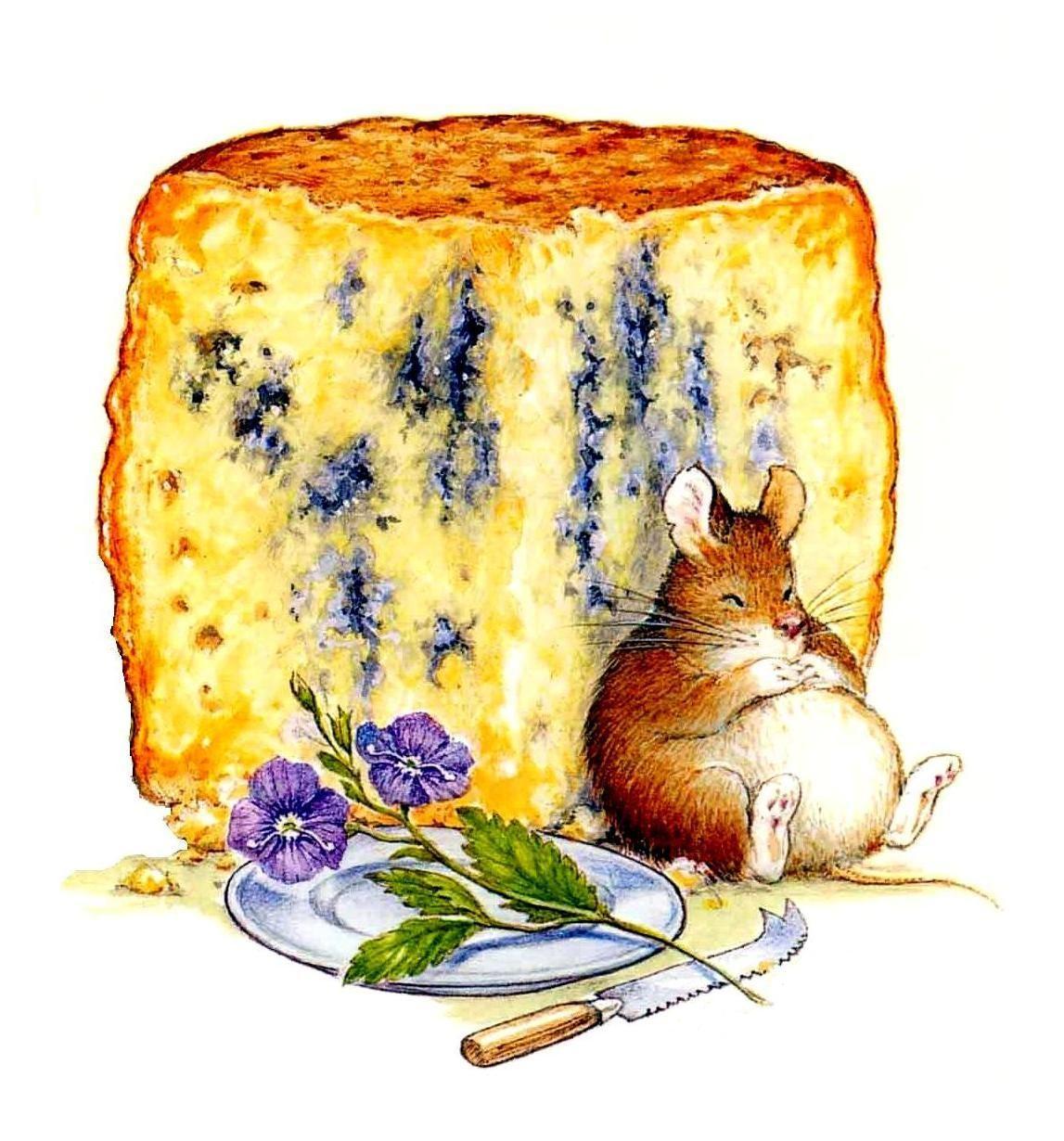 Сыр открытка, банкира открытки взрослая