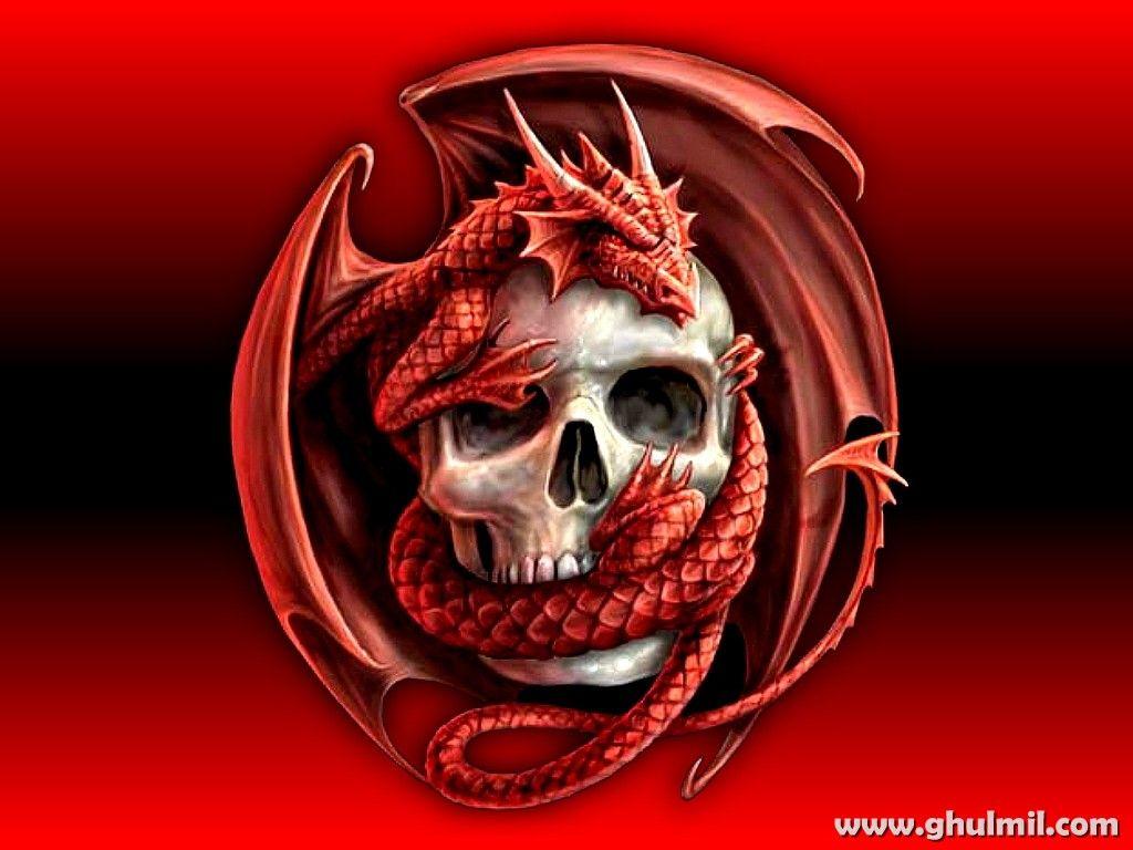 3d Hd Wallpapers Skull Wallpaper Skull Red Dragon