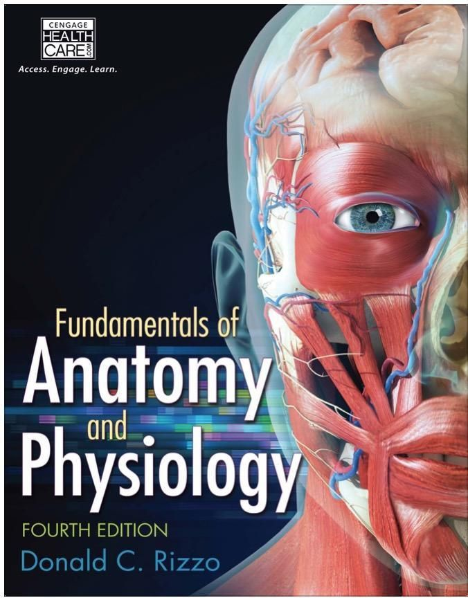 Fundamentals of Anatomy and Physiology 4th Edition PDF | Textbook ...