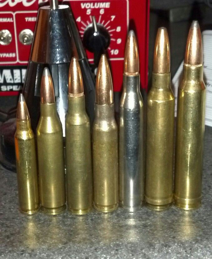 25 30 30 Helloworld: L To R .223, .243, 6.5x55, .308, 25-06, 7mm Mag, 300 Win