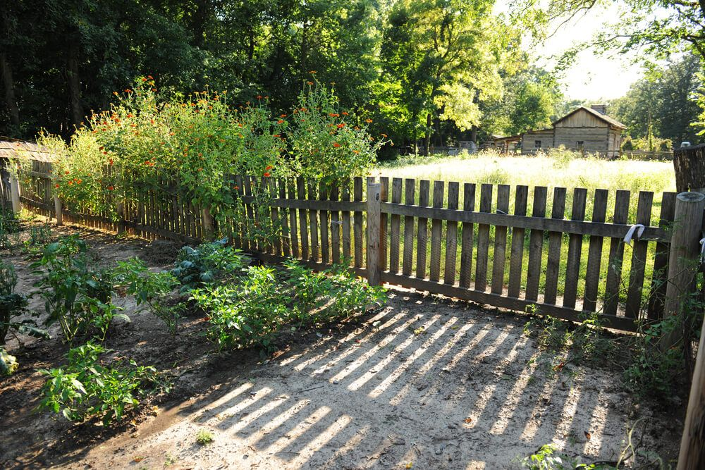 101 Fence Designs, Styles and Ideas (Backyard Fencing