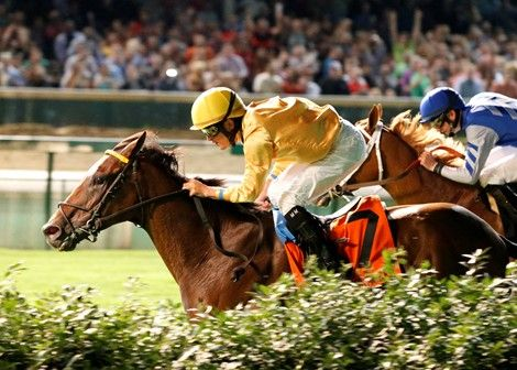 Departing and jockey Miguel Mena squeezed through a narrow hole along the rail—brushing the hedge at one point—to get past 8-5 favorite Sky Flight on their way to a half-length victory in the $200,000 Firecracker Stakes (gr. IIT) at Churchill Downs. Photo: Reed Palmer Photography/Churchill Downs