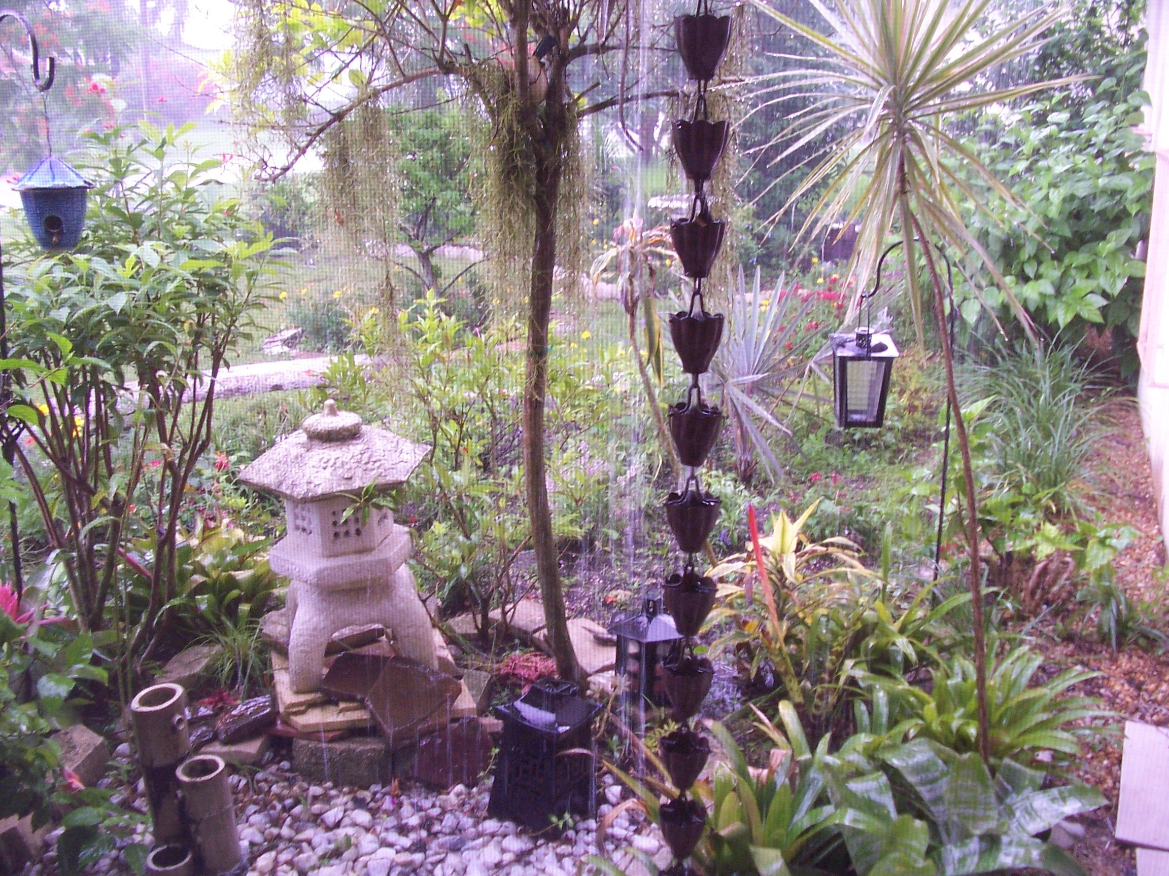 Japanese influence ( my sister's garden in Florida ) | My ...