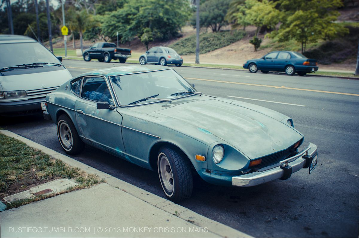 Mom, can we keep him? Fading Datsun 240z at Balboa Park with original wheels! #JDM #Nissan #S30 #TwoDoor #RustyCar #California #ClassicCar #Blue #Coupe #MadeInJapan #JapaneseCar #Seventies