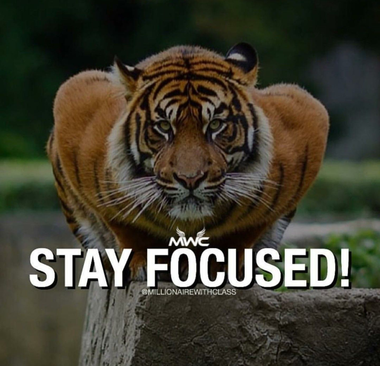 Bikram Yoga Funny Quotes