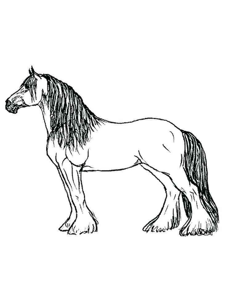 Horse Coloring Pages Printable. Below is a collection of ...