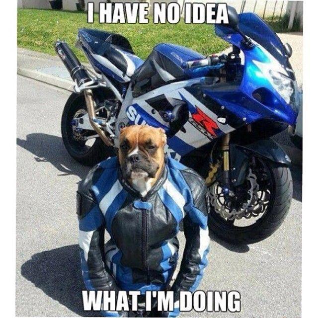Motorbike Meme Monday Found this fairly amusing! # ...