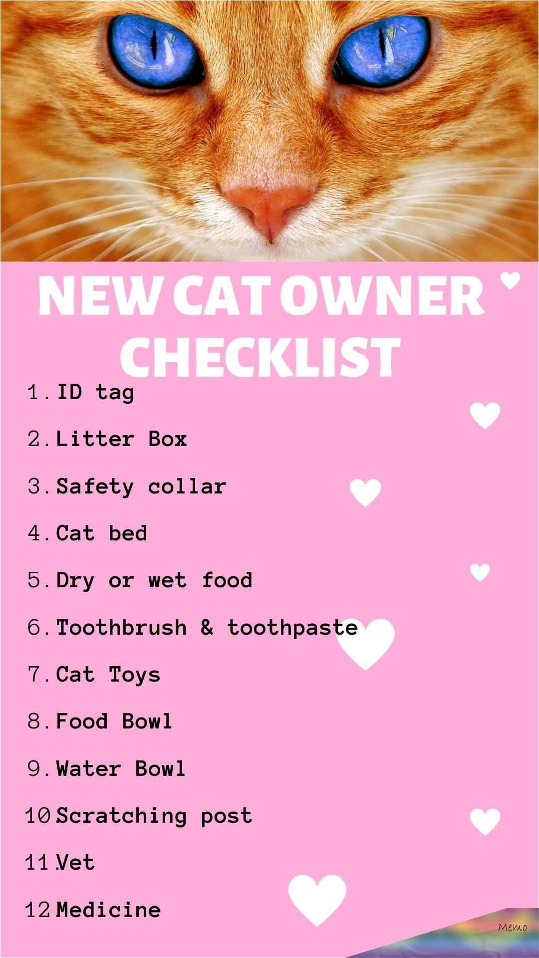 Pin By Naomipleijter On Cat Facts In 2020 Kitten Care Cat Owners Cat Essentials