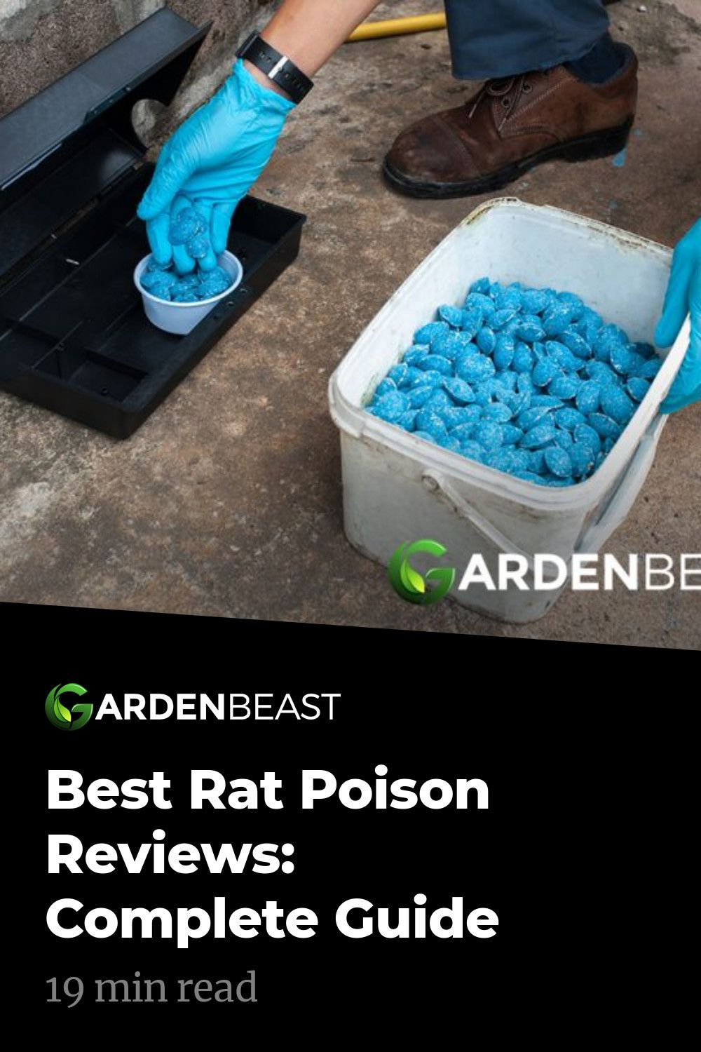 Best rat poison reviews complete guide in 2020 rat