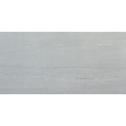 vloertegel contract silver 30 x 60cm per 111m2 praxis
