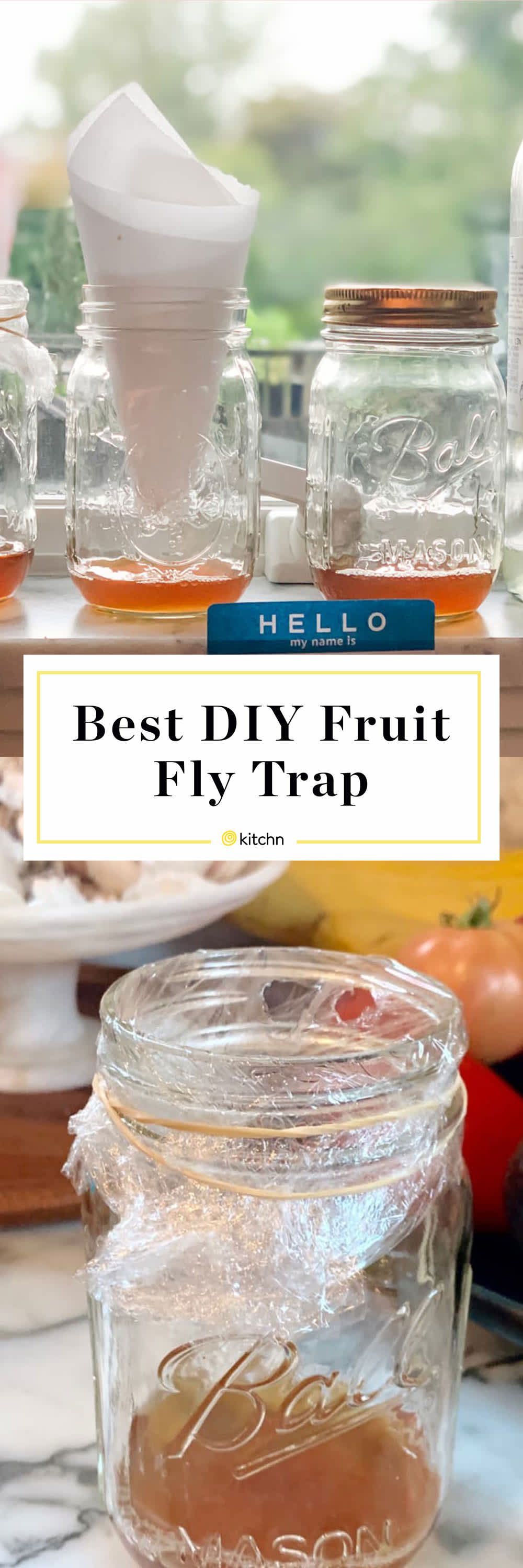 I Tested Four DIY Fruit Fly Traps and One Method Clearly