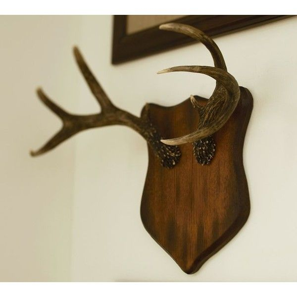 Pottery Barn Faux Antler Plaques (£34) found on Polyvore ...