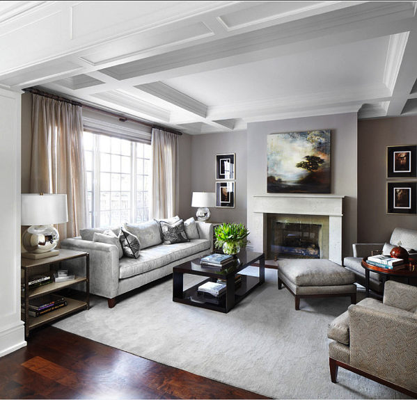 Beautiful Neutral Transitional Living Room Inspiration Formal