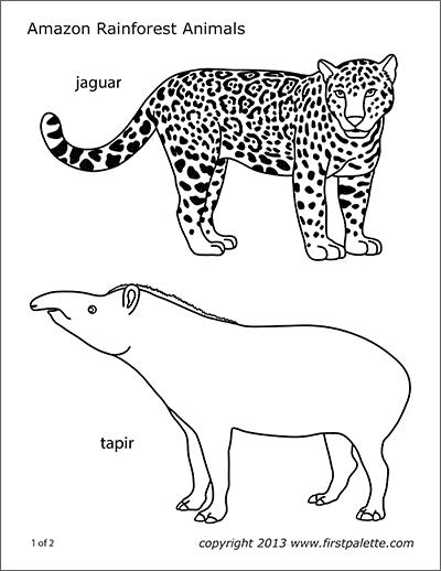 Folding Zoo Animal Templates   Free Printable Templates ...