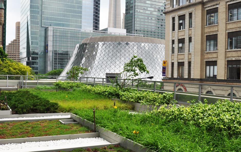 Green Roof Design Janet Rosenberg And Studio Green