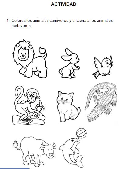 Animales Herbivoros Carnivoros Y Omnivoros Para Colorear Buscar
