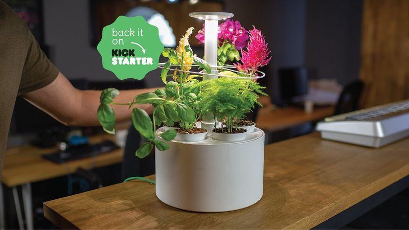 Tech Savvy Mini Indoor Gardens Indoor Garden Indoor 400 x 300