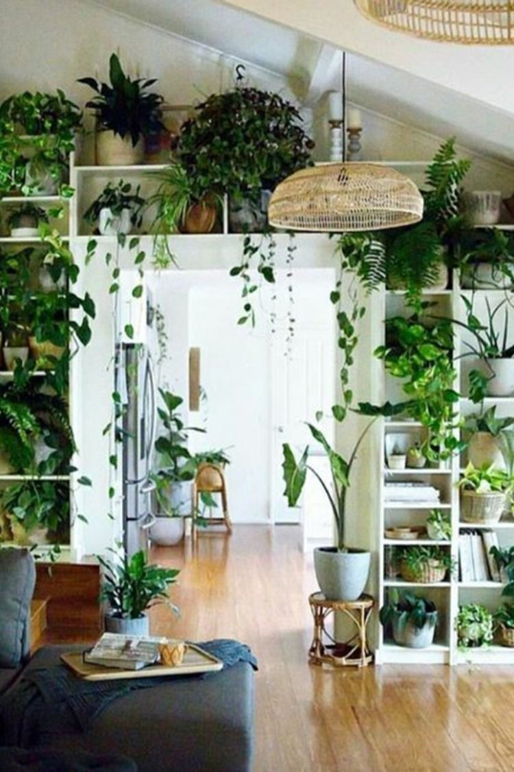 5 Amazing Indoor Garden Decorations Tips and Ideas