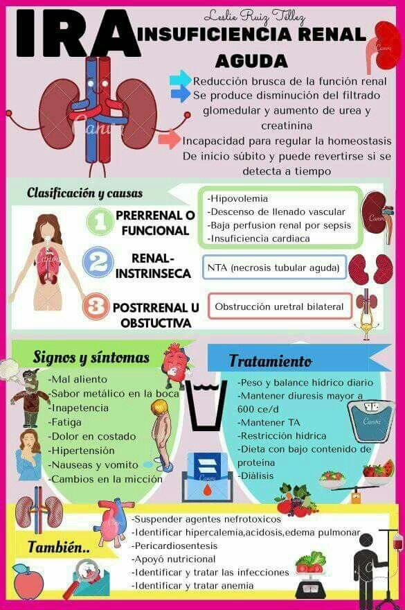 Tipo de dieta para insuficiencia renal aguda
