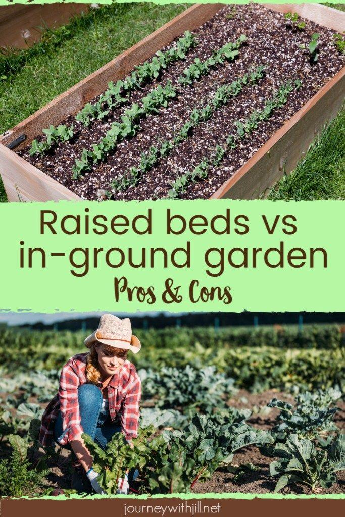 Raised Garden Bed vs. In Ground Garden Garden beds