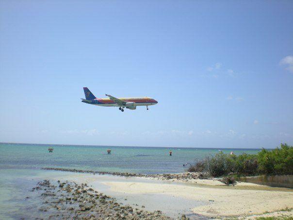 Air Jamaica MBJ Airport Air Jamaica Pinterest Air jamaica and - air jamaica flight attendant sample resume