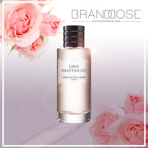 Gris Montaigne By Christian Dior Now 1400aed Branddose