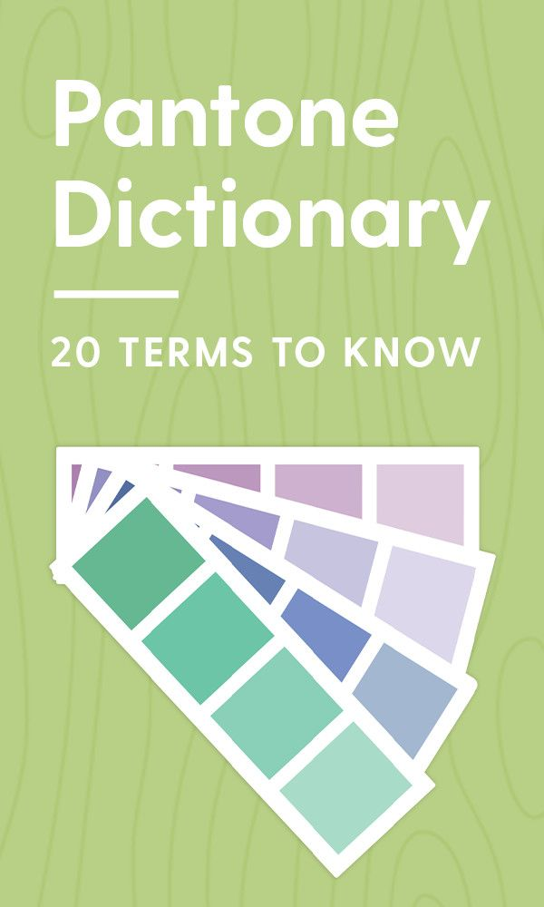Pantone Dictionary: 20 Terms You Should Know and Understand ...