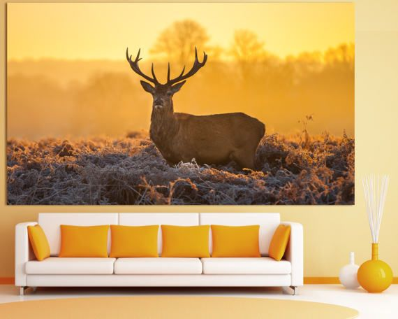 Large nature deer photography wall art print set on canvas deer wildlife photography wall decor deer photo decor animal wall art print set deer