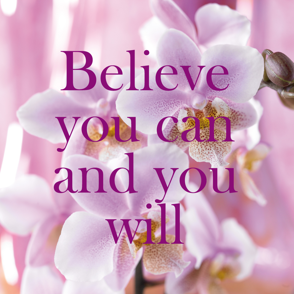 Quote orchids quotes pinterest orchid and quotation