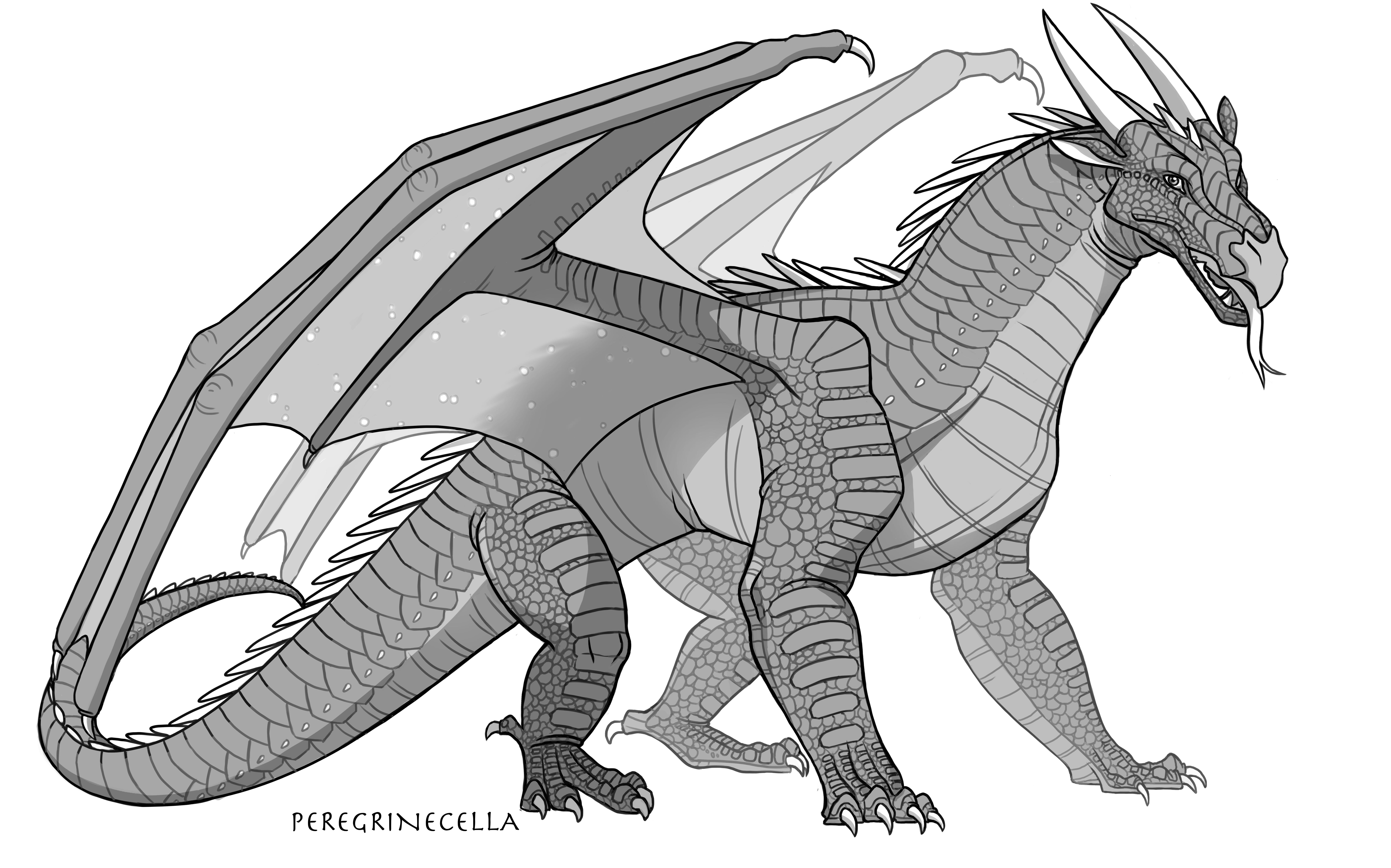 Nightwing Base By Peregrinecella On Deviantart Wings Of Fire Dragons Wings Of Fire Fire Art