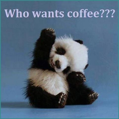 Panda Quotes New Who Wants Coffee Quotes Cute Quote Coffee Morning Panda Coffee Humor