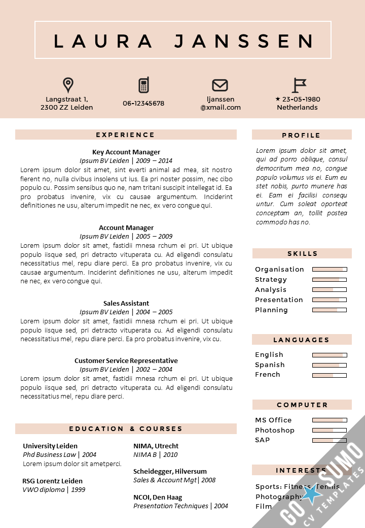 Cv Template Netherlands Resume Format Resume Template Professional Resume Examples Curriculum Vitae Template