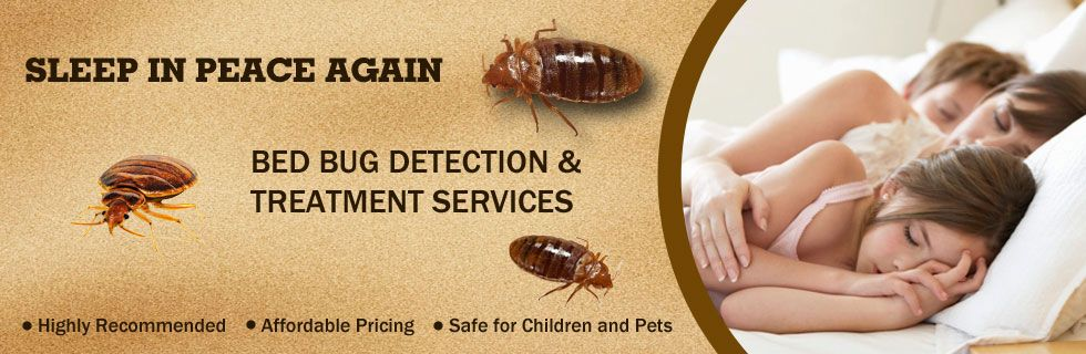 Awesome We Are Offering Luminous #services For #Bed #Bug #Exterminator In #Toronto