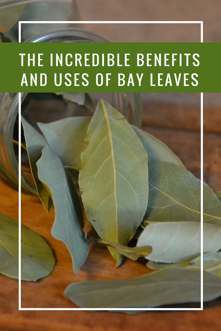 Allergy: bay leaf treatment for children and adults 21