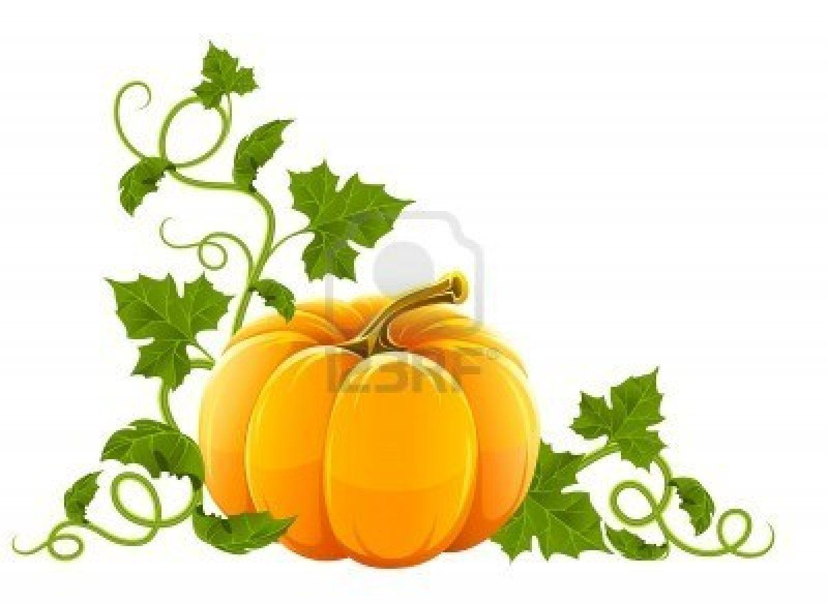 Pumpkin With Lots Of Leaves How To Draw Or