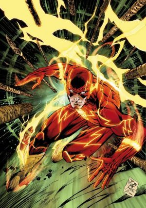 Historia de Flash y sus diferentes versiones
