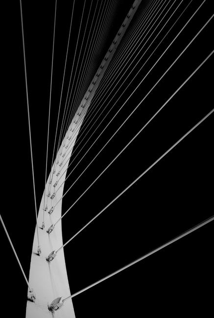 Black and white // line art bridge