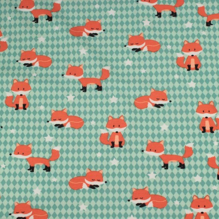 Fox Party  In Mint Tricot / Pindanutjes.be