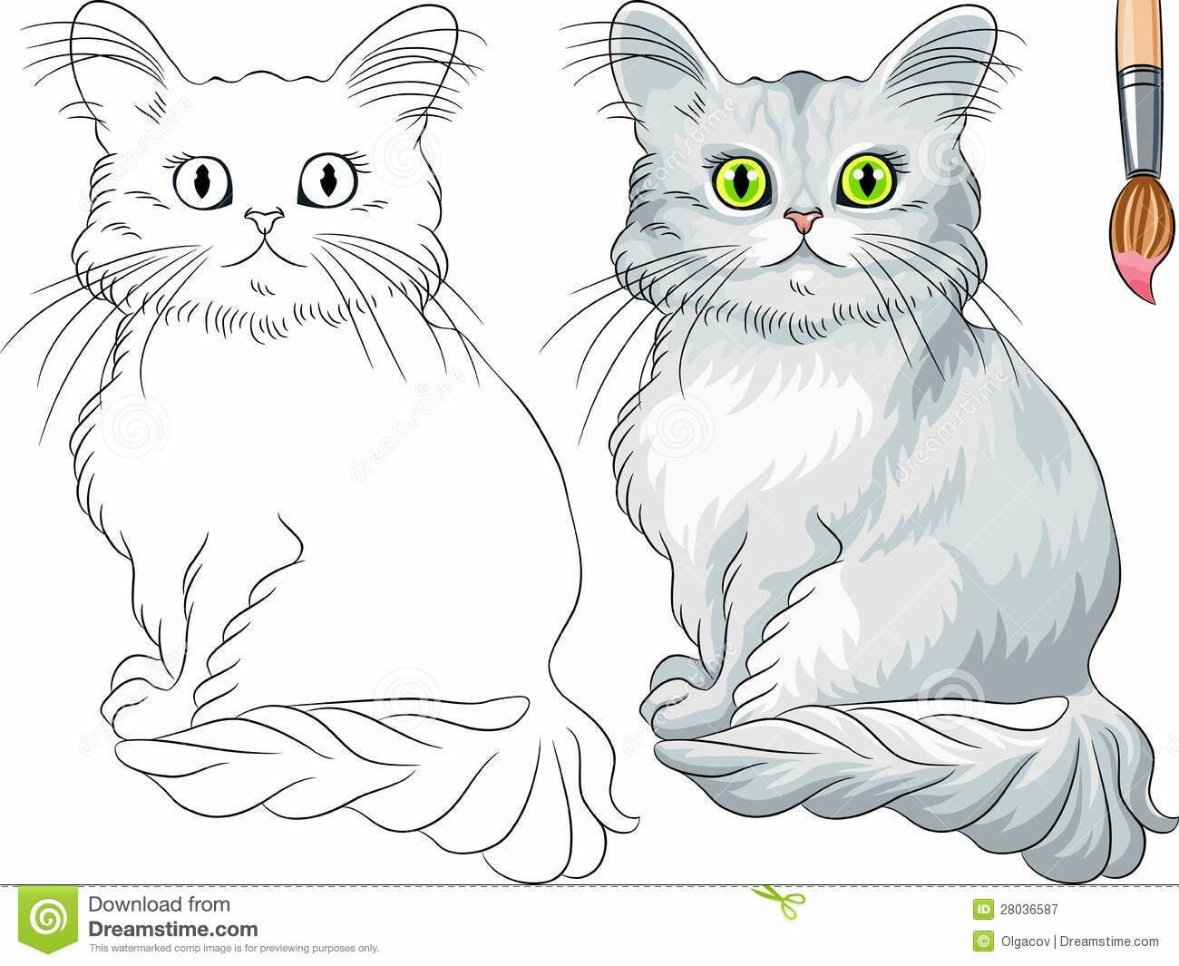 Vector Coloring Book For Children Of Funny Asian Semi Longhair Cat (Tiffany)