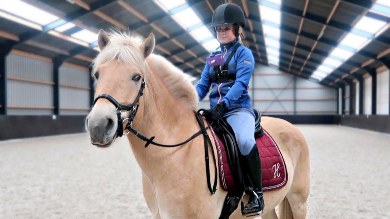 Wat Als Er Een Blind Meisje Op Moos Rijdt Vlog 87 Grappige Paarden Fjord Paard F