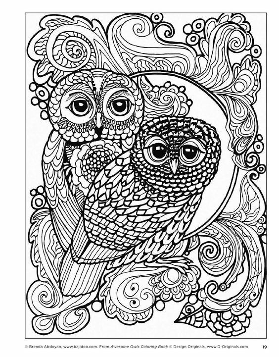 Pin by Lena E on Colouring pages Pinterest Owl, Adult coloring - copy coloring pages of cartoon owls