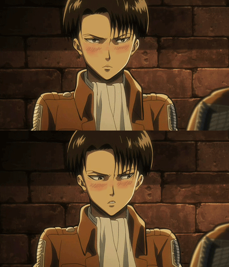 Me: um Heichou why are you staring at me? Levi: *blushes* shut up brat I wasn't! Me: aaw Heichou is blushing! Levi: *blushes redder* I. am. not. shut up brat or I will kill you!!! *turns away to hide it*