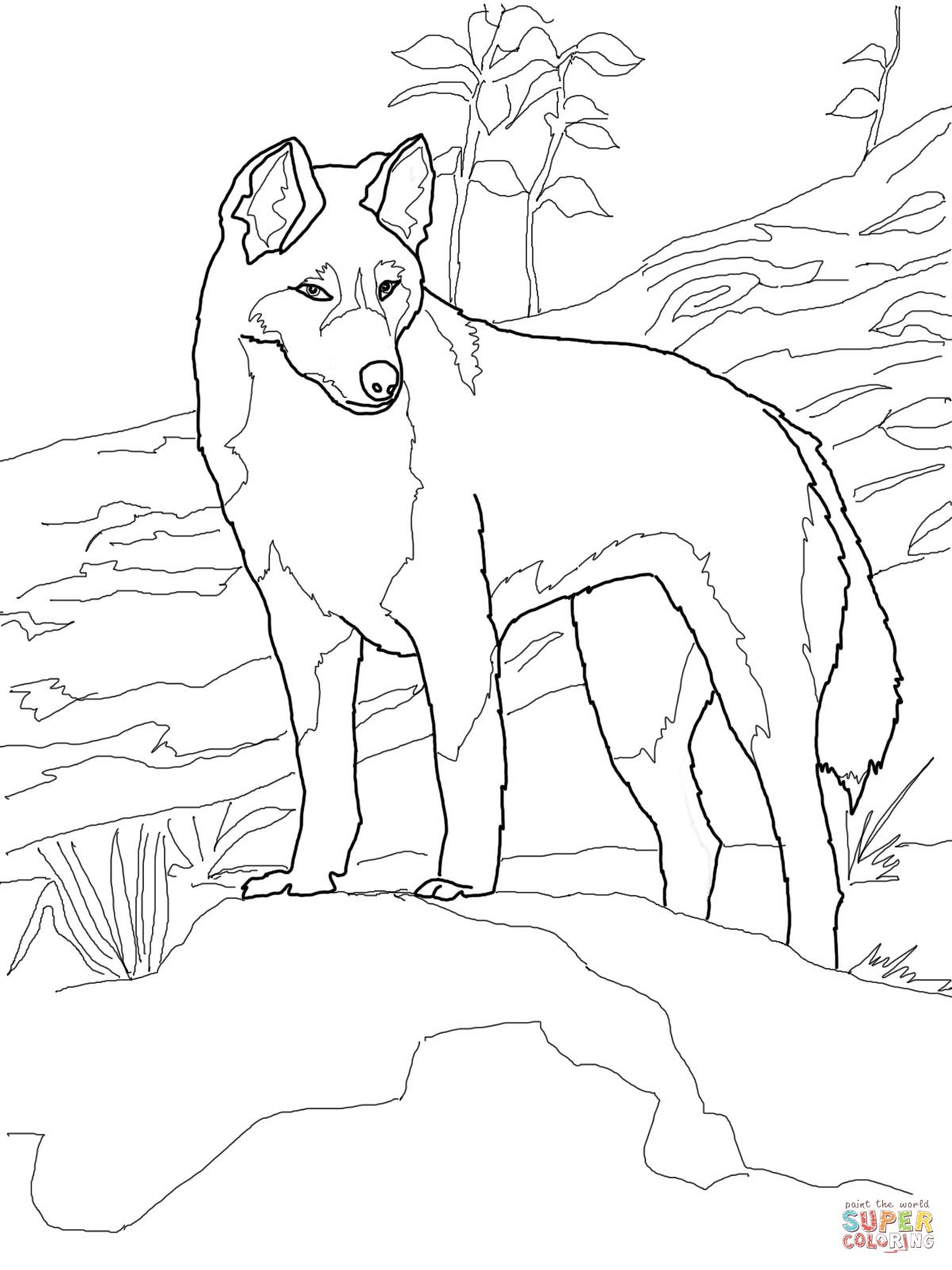 Dingo From Australia Coloring Page Supercoloring Com Zoo Animal Coloring Pages Animal Coloring Pages Farm Animal Coloring Pages