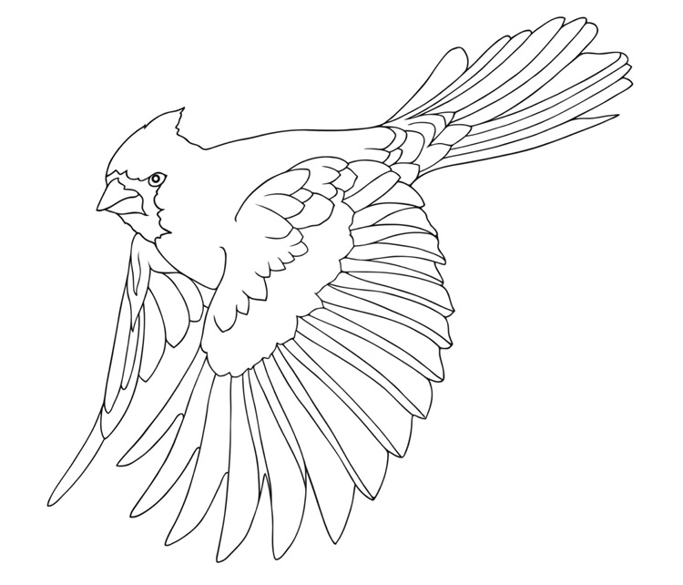 Pin On Download Coloring Pages