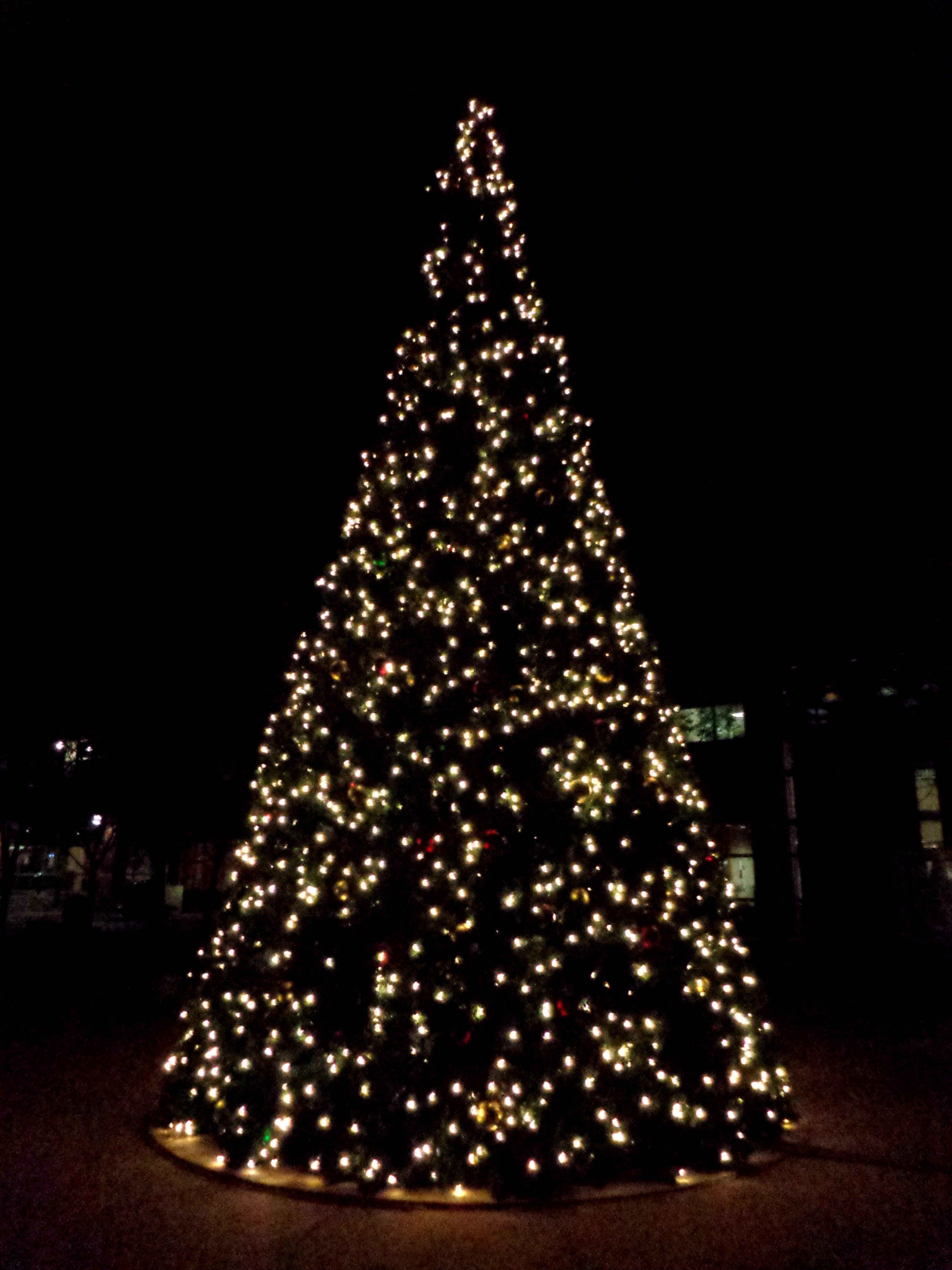 Slayer Weihnachtsbeleuchtung.Free High Resolution Photo Of A Christmas Tree With White Lights