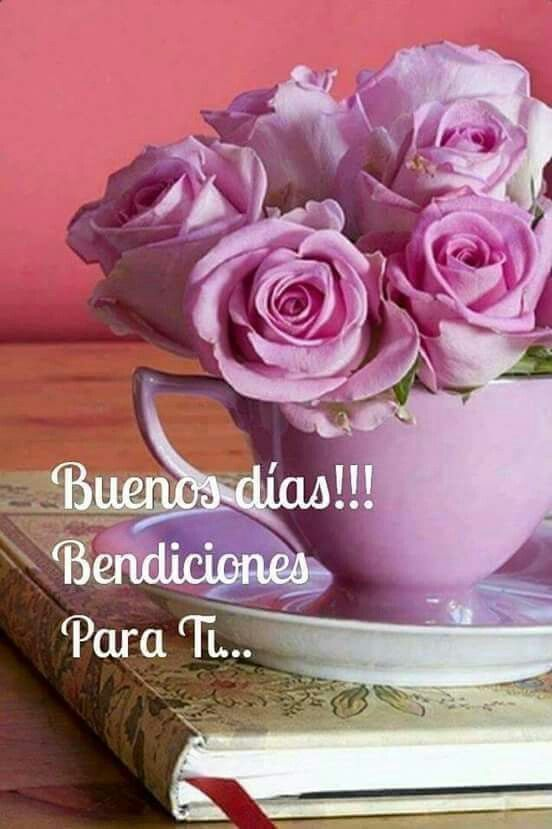 arreglos florales buenos dias viernes feliz viernes arreglo floral tazas de t maana fotos madrid hermosas flores rosa