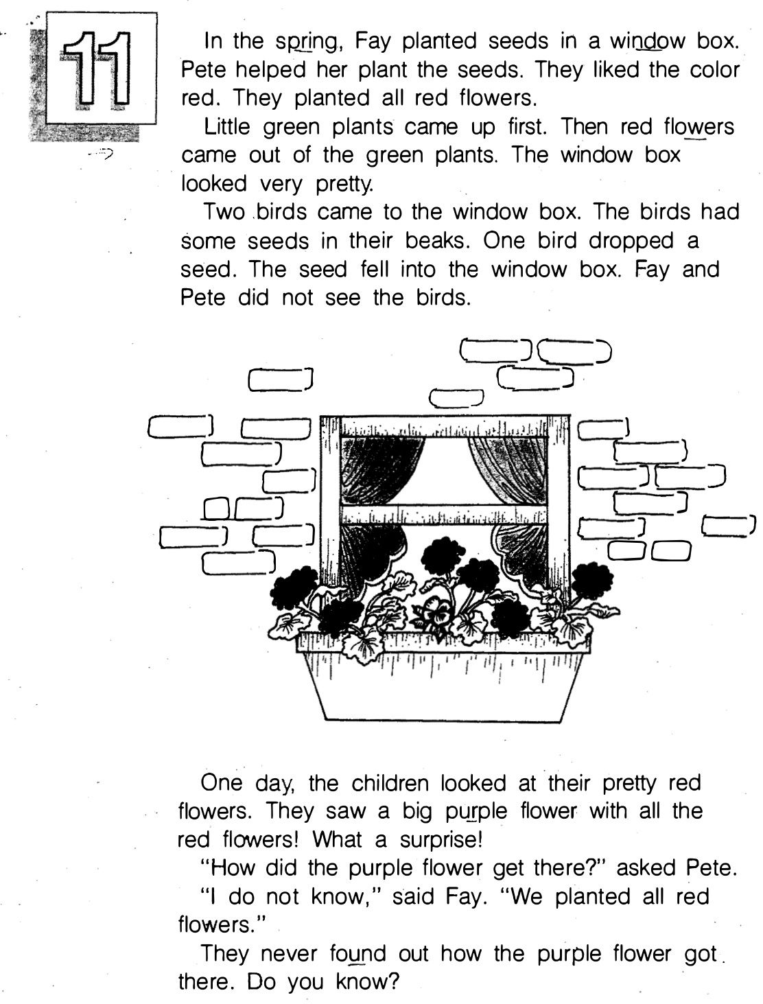 Story 11 Page 1 Red Flowers Reading Comprehension Green Plants [ 1463 x 1112 Pixel ]