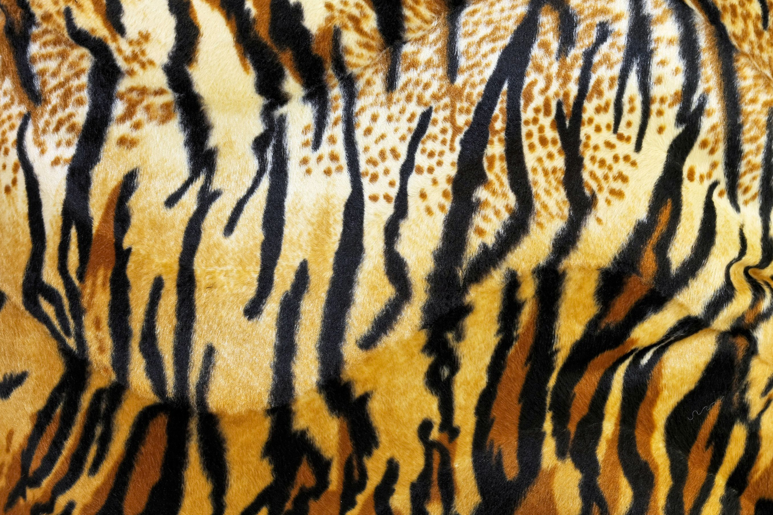 Animal Print Wallpaper Free Download Tiger Stripe Prints