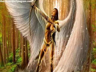 Free Angel Of Light Wallpapers Angel Of Light Pictures Angel Of Light Photos Angel Of Light 10925 1680x1050 Wallpap Angel Warrior Angel Art Angel Wallpaper
