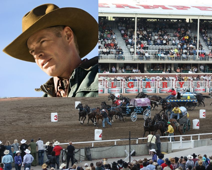 Calgary Stampede Cowboy Euthanized After Chuckwagon Race